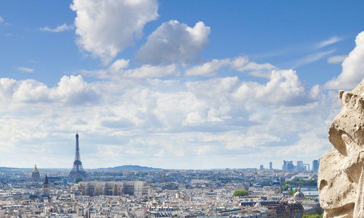 Notre Dame Gargoyles, Paris