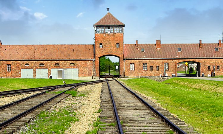 school trip to Auschwitz