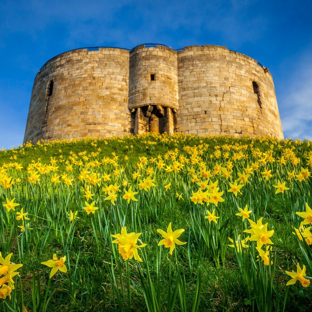 Clifford'sTower_193100894