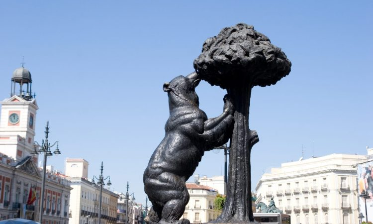 The Bear and The Strawberry Tree, Madrid